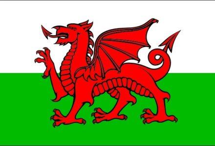 Wales Public Affairs Service